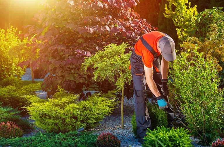 Maintaining garden heat in summer