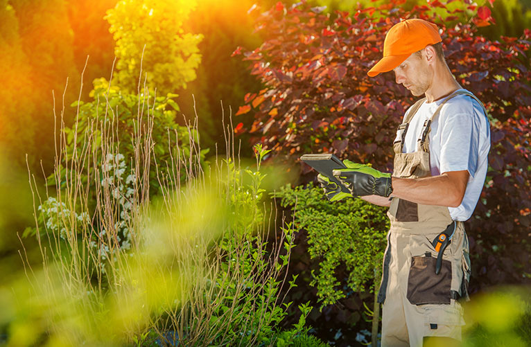 Pick The Right Landscape Company