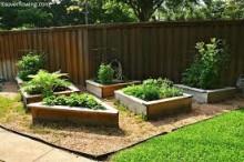 organic_vegetables_gardens