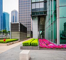 Commercial Landscape Maintenance Company