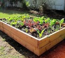 build_a_vegetables_garden