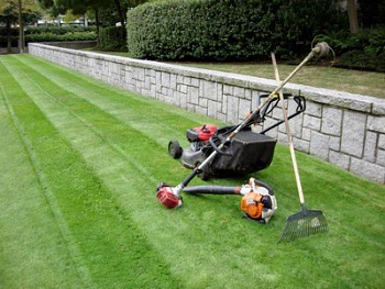 Professional Lawn Care Services Toronto