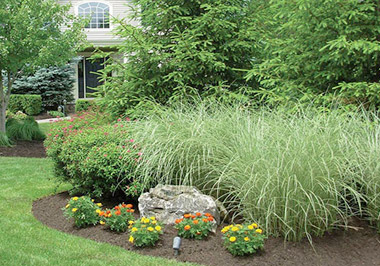Residential Landscaping Maintenance Toronto