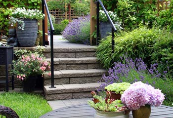 Landscape Design for Home and Commercial in Toronto