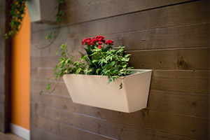Indoor Planting Services in Toronto