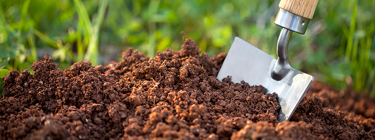 compost-pack