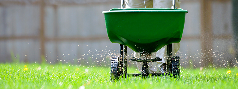 lawn-fertilizer-pack