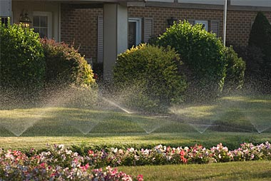 watering-pic-top-right