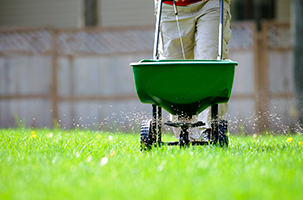 6 Benefits of Lawn Fertilization that You Must Know