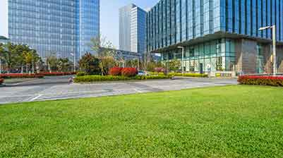 How Commercial Lawn Services Can Raise the Value of Your Business