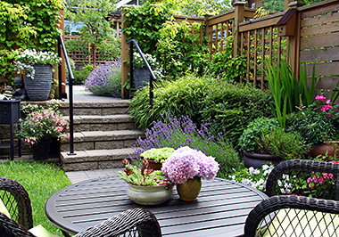 Backyard Landscaping & Design
