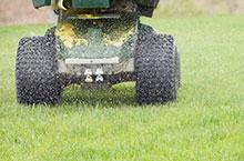 Lawn Care & Maintenance Using Lawn Fertilizer