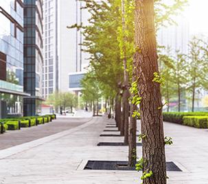 Hire a Commercial Landscape Maintenance Company